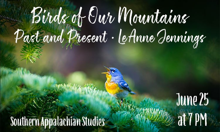 Birds of Our Mountains